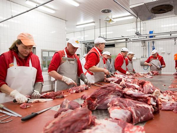 Картинки для мясного цеха